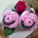 Stars Sock Rose Buds